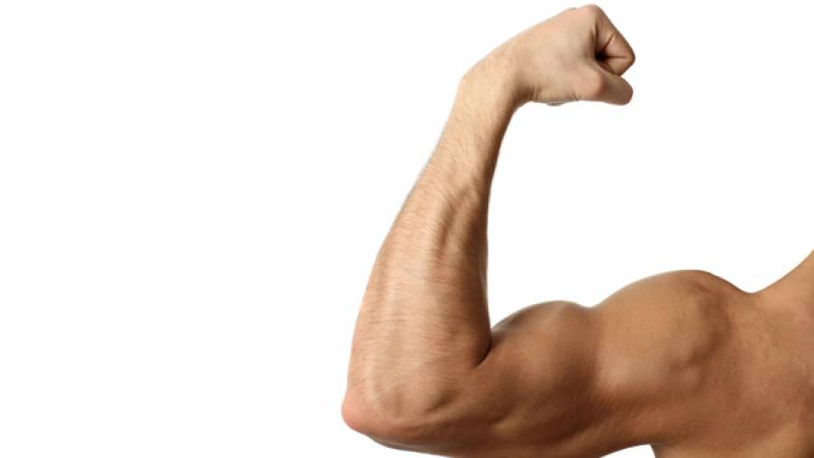 Schneller Muskelaufbau - Was ist eigentlich das anabole Fenster?