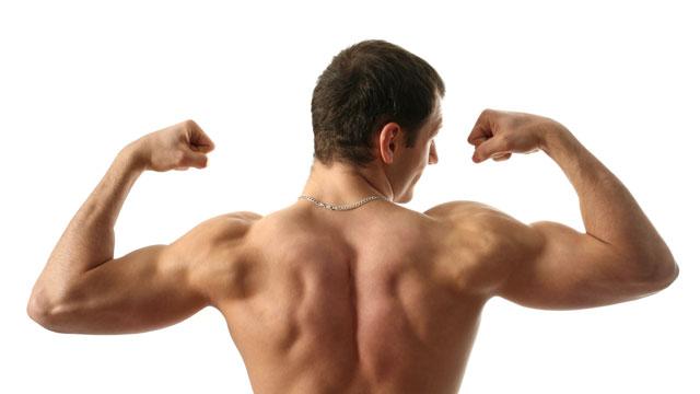 Dr. Sport: Bauch- vs. Rückenmuskeln