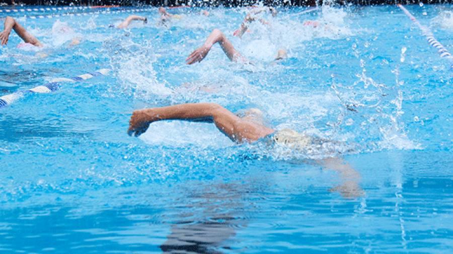 Schwimmen: Was ist besser Umfang oder Intensität?