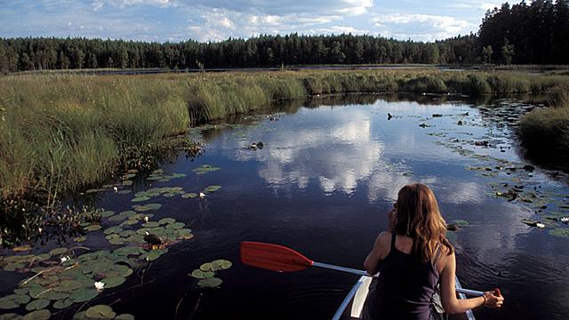 Seen sehen – In Wanderschuhen durch Småland