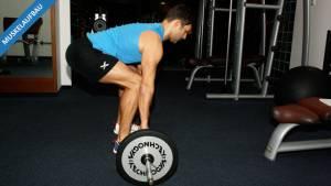 Wie die Ägypter – Pyramidentraining beim Muskelaufbauprogramm
