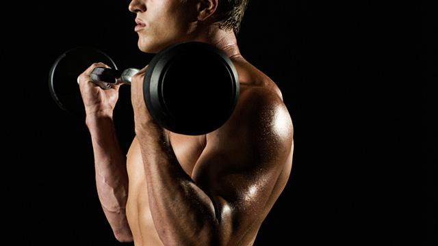 Training gegen Lipomastie – Was rät Dr. Sport?