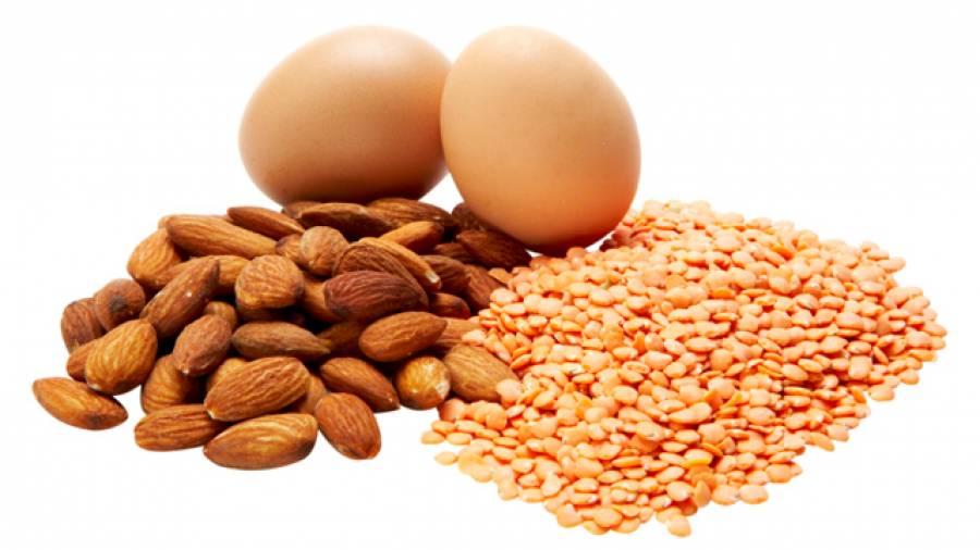 Proteinpower – 10 natürliche Eiweißquellen