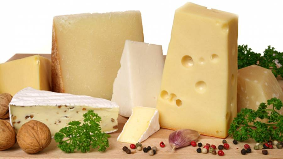 Ernährungsmythen aufgedeckt – Schließt Käse den Magen?