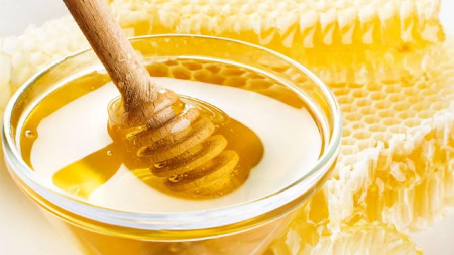 Honig als Wundheilmittel – Wie funktioniert's?
