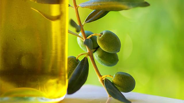 Olivenöl könnte Übergewicht vorbeugen