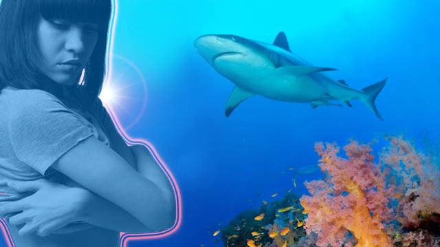 Aumakua – Der Hai wird zum Designer
