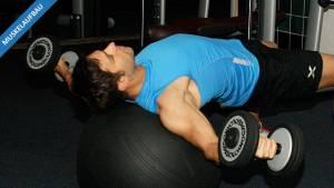 Die Grundlage wird gelegt – Eingewöhnungsphase beim Muskelaufbau-Programm