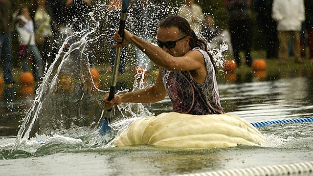 Tollkühne Männer in ihren schwimmenden Kürbissen