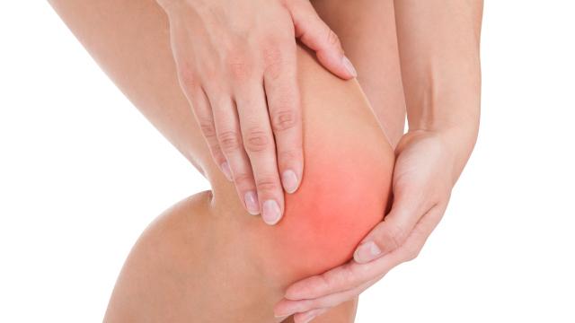 Arthritis: Pinienextrakt kann Knieschmerzen reduzieren
