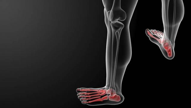 Wunderwerk Fuß – Was unsere Füße besonders macht