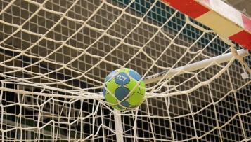 """""""Handball-WM-Durchführung grundsätzlich nachvollziehbar, aber..."""""""
