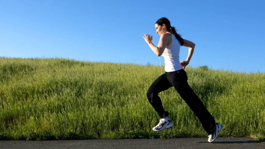 sport und stoffwechsel