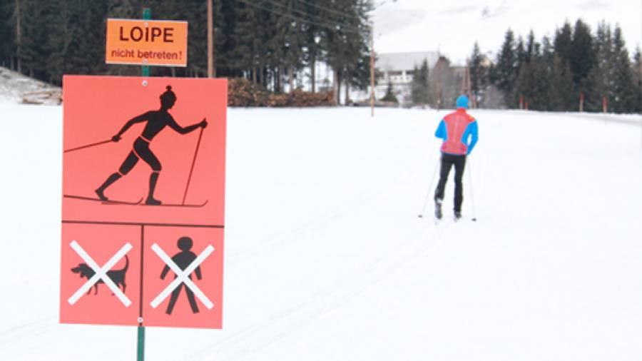 Klassisch – Skilanglauf für Einsteiger