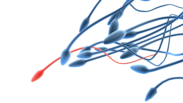 Die größten Spermienkiller