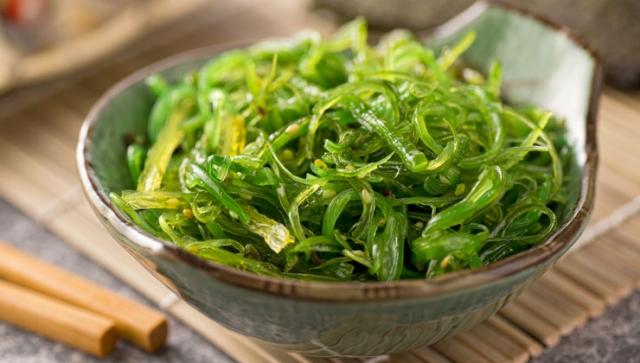 Algen – Der neue Salat?