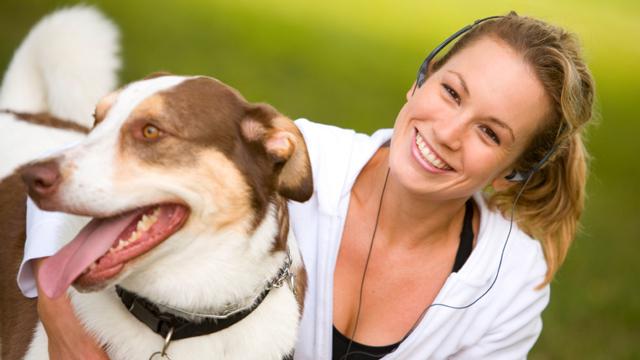 Flirtfaktor Vierbeiner: Ein Hundeblick erobert Herzen