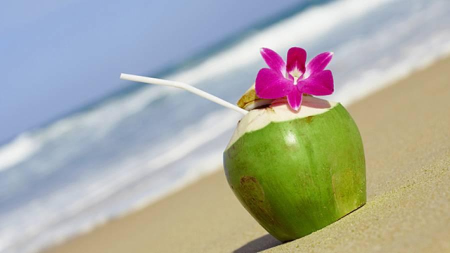 Sportgetränk Kokoswasser – Power von der Palme