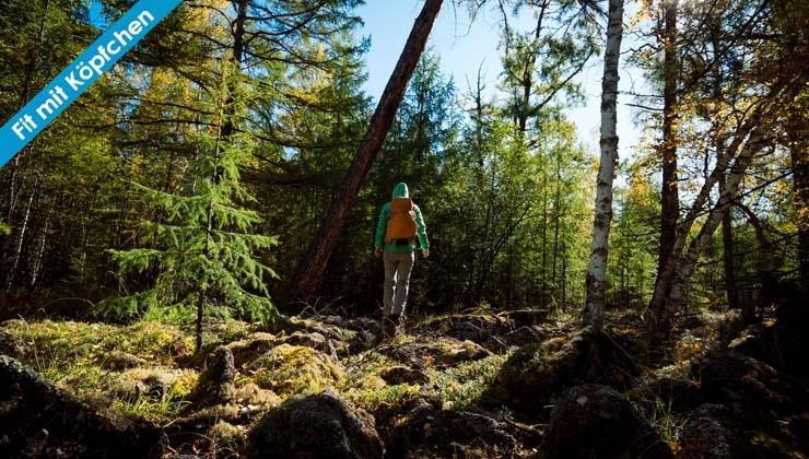 Waldbaden als Balsam für die Seele
