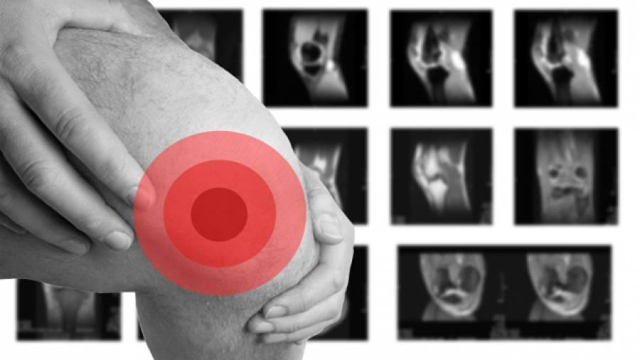 Aus der Nase gezogen – Nasenknorpel sollen Knie heilen