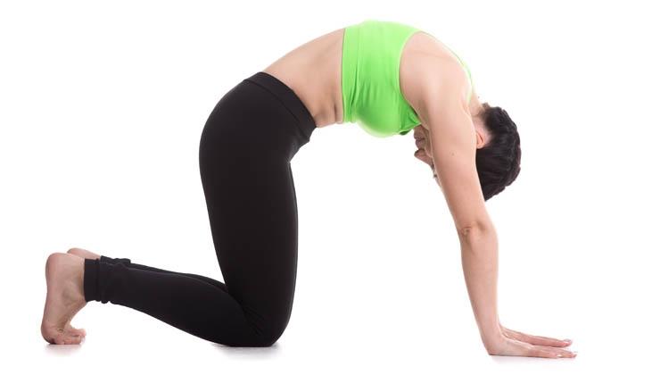 Diese fünf Übungen tun der Wirbelsäule gut...