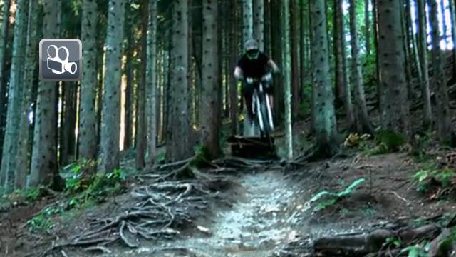 Rasant bergab - Mountainbike Video