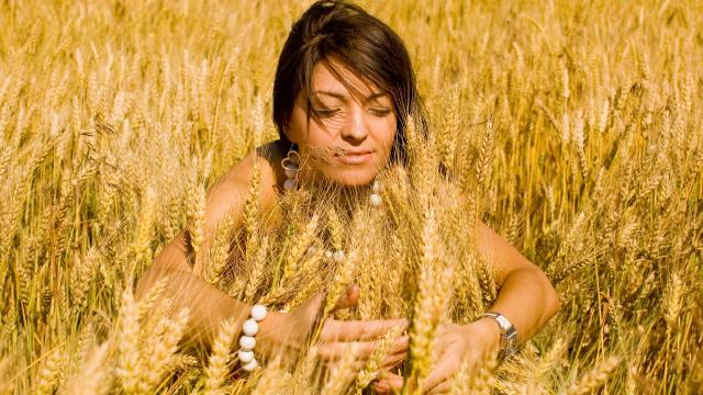 Die volle Kraft des Korns - Getreide