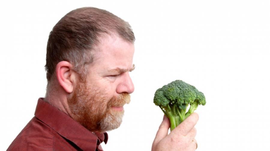 Hirnnahrung – Gesunde Lebensmittel gegen geistigen Abbau